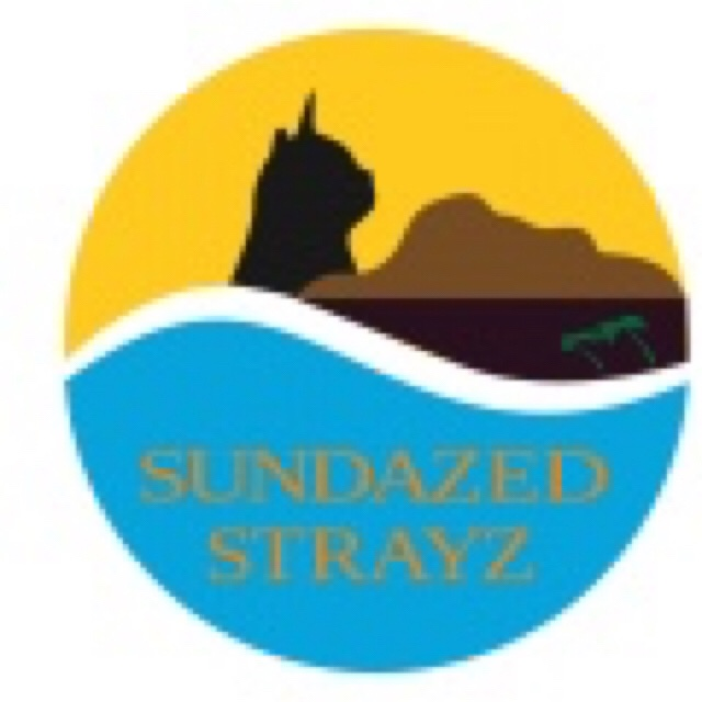 Sundazed Strayz